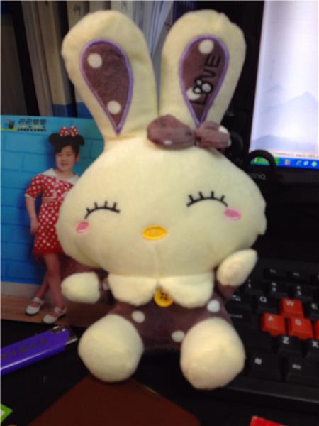 毛绒绒的小兔子,笑的很可爱,穿着带扣子的小衣服,耳朵上带着蝴蝶